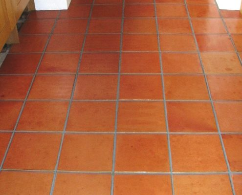 Terracotta Cleaned,Sealed and grout recoloured after in Sandbach Cheshire