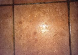 Ceramic floor tile and grout cleaning