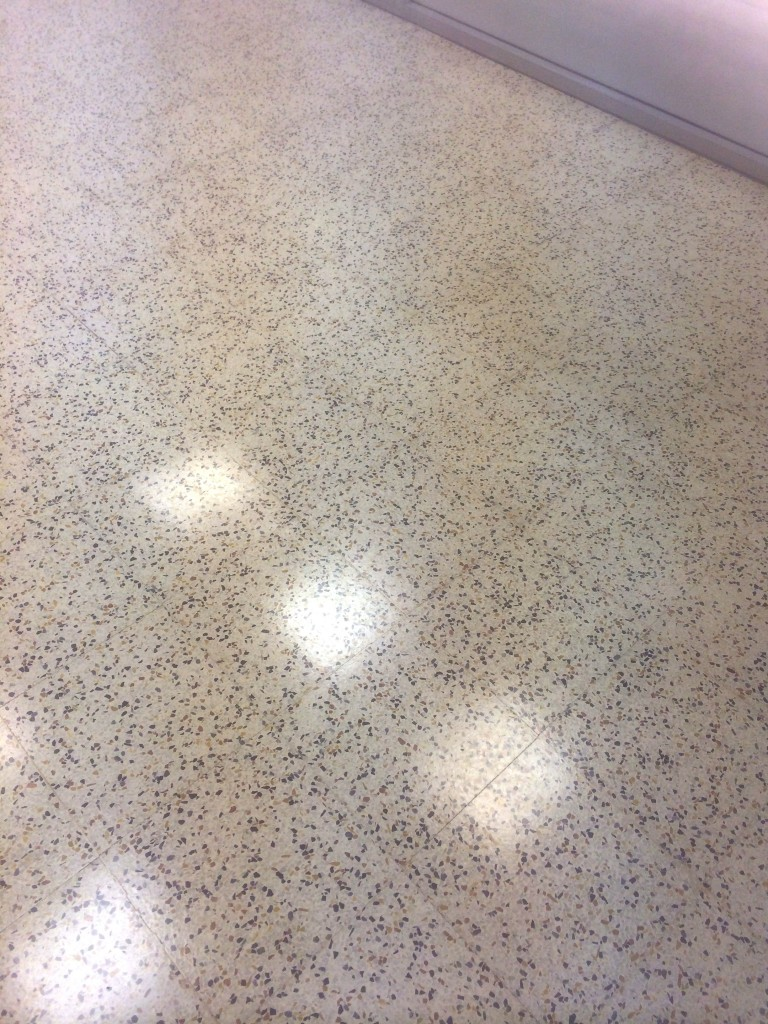 how to terrazzo floors clean floor cleaning
