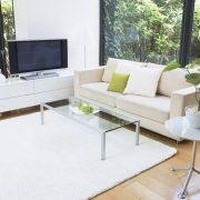 Classic-living-room-with-white-sofa-and-carpet